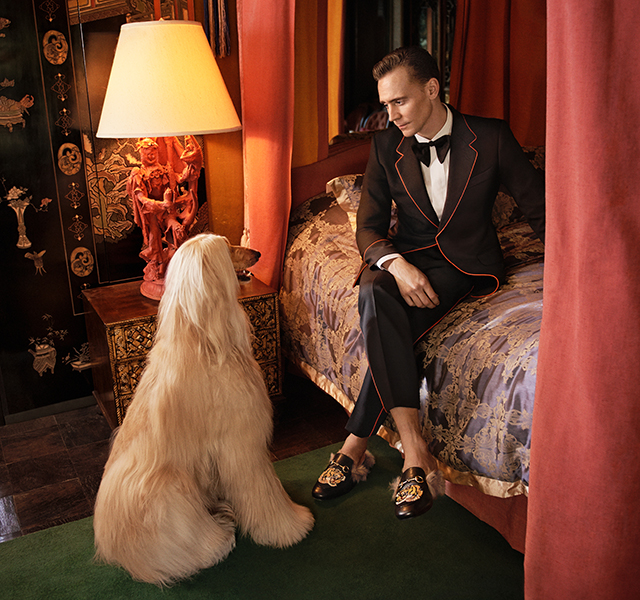 gucci-tom-hiddleston-campaign-hires-inside3